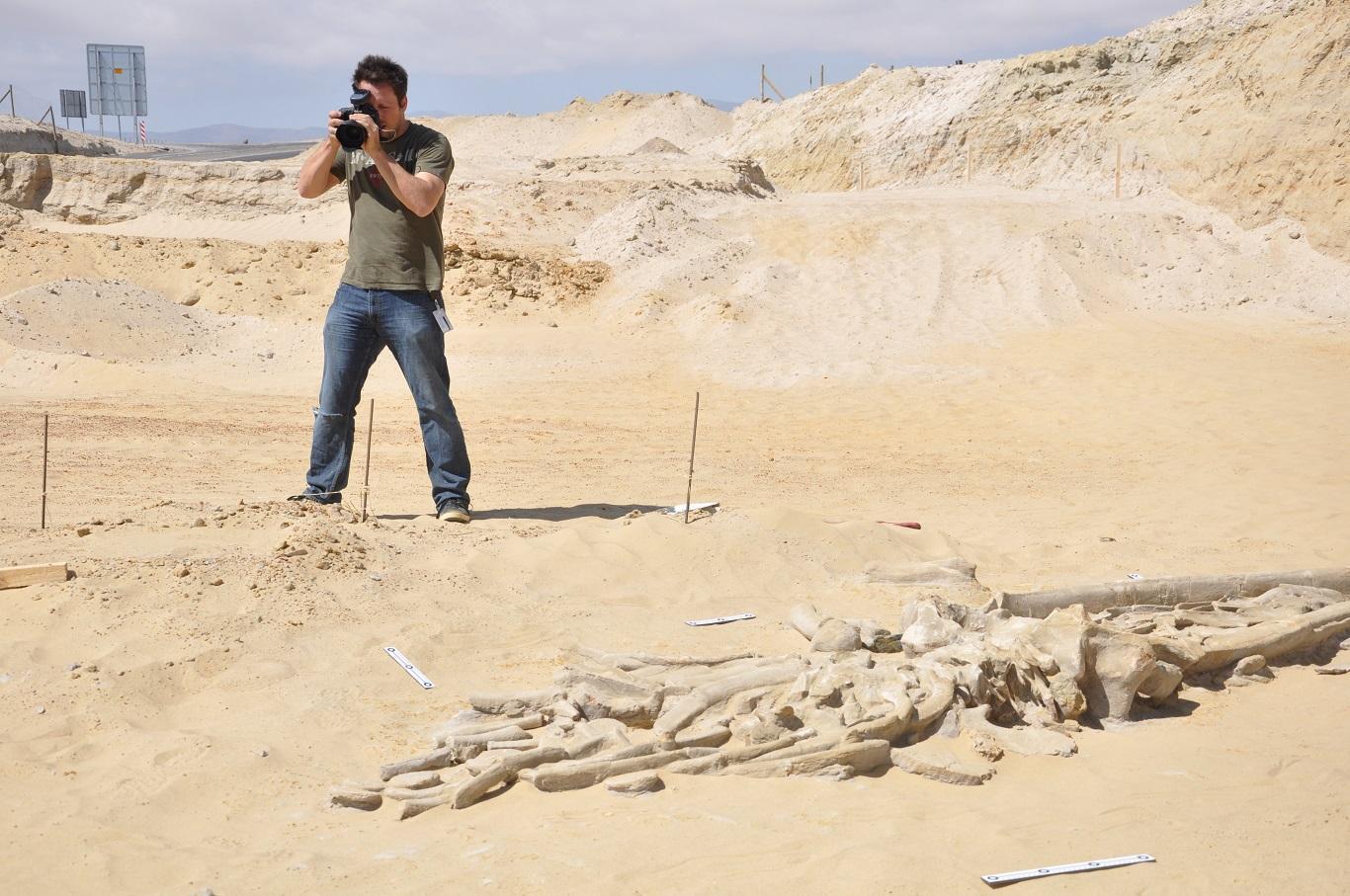 Fotógrafo tomando fotografías de fósiles en el desierto