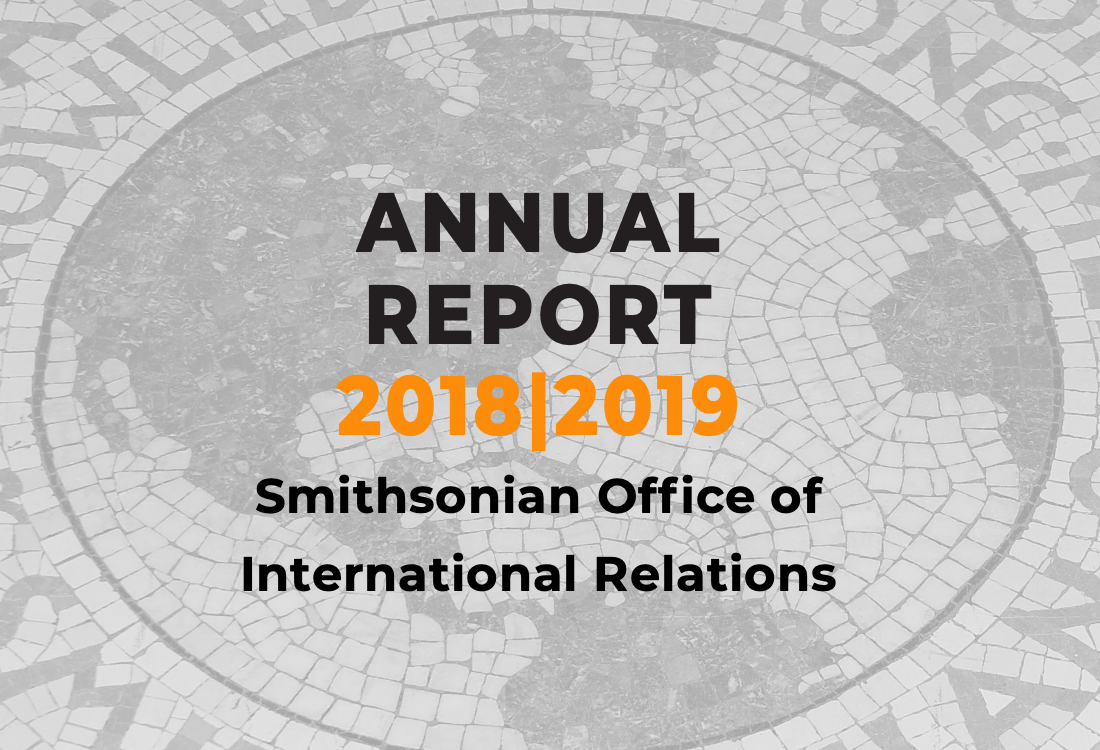 2018|2019 Annual Report on a mosiac background