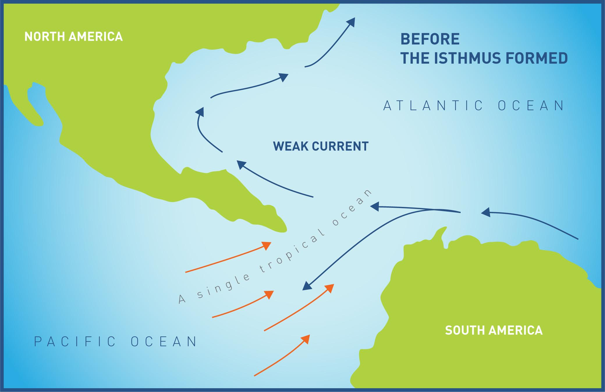 Panama Canal Project Fossils And Global Change Smithsonian Global - Is panama us territory map