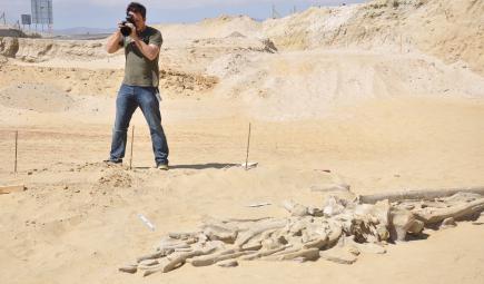 مُصور يلتقط صورًا للحفريات في الصحراء