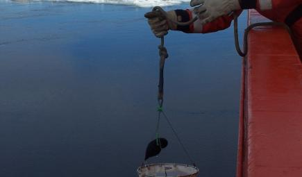 Photobiologist collecting phytoplankton sample from sea in Antarctica