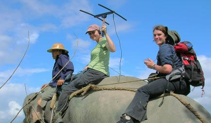 Researchers with tracking equipment riding on Asian elephant