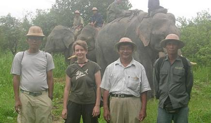 Team members pose in front of Asian elephants