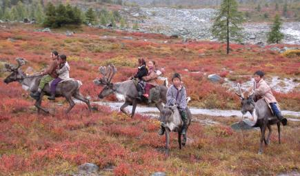 Young Mongolian children ride reindeer in pastureland