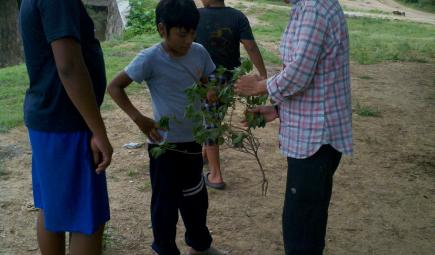 Researcher showing ethnobotanical specimen to children
