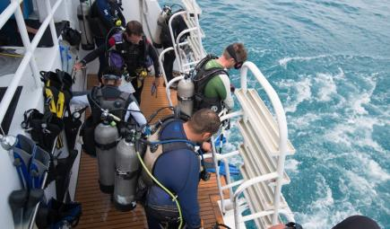 Researchers with oxygen tanks on boat deck prepare to dive