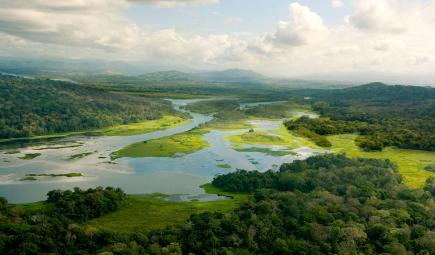 Ríos y bosque en cuenca del Canal de Panamá