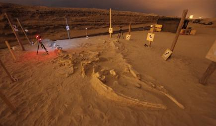 Night time 3D laser scanning of 'La Familia' at Cerro Ballena, in 2011. Photo Credit Smithsonian Institution