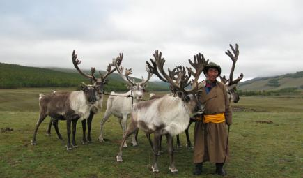 Guide standing next to reindeer in Mongolia