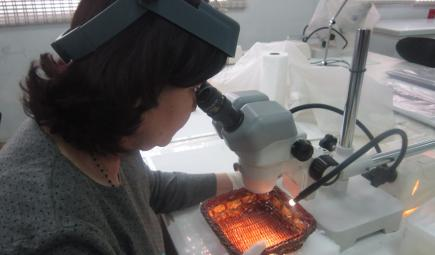 An Iraqi museum professional examines an artifact in the laboratory.