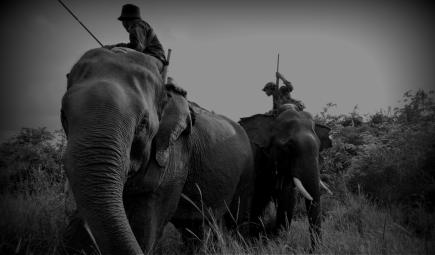 Two men riding Asian elephants in Myanmar