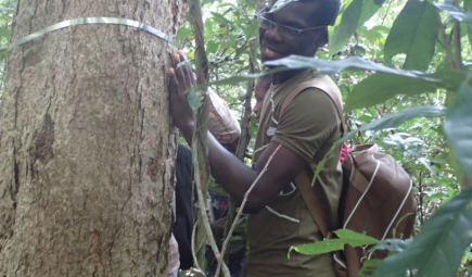 Teachers and students install treeband to measure tree growth