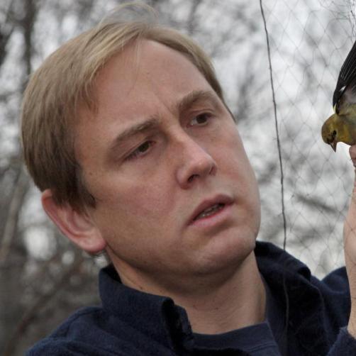 Conservation scientist holds bird caught in net