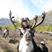Researcher mounted on back of reindeer
