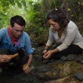 Scientists using hammers and chisels to uncover fossils in Panama