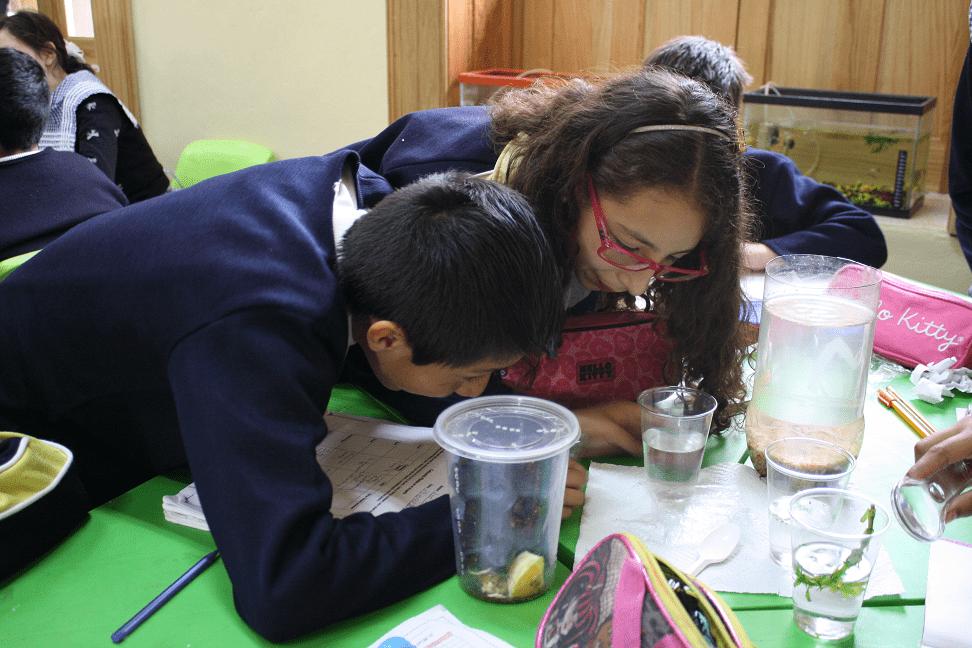 Students use classroom materials.